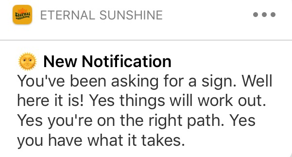Eternal Sunshine Notification 2